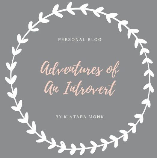 Adventures of an Introvert